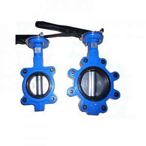 Chinese manufacturers DN100 Stainless Steel Wafer Butterfly Valve