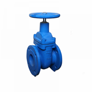 Factory Cheap Hot Ansi Rubber Anti-seismic Expansion Joint CI Gate Valve Flanged High Pressure