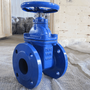 CI Gate Valve Flanged High Pressure
